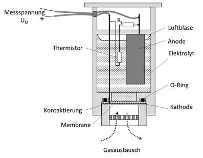 Wi.Tec EC-Sauerstoffsensor