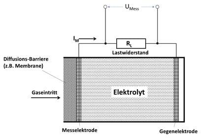 Wi.Tec EC Sauerstoffsensor